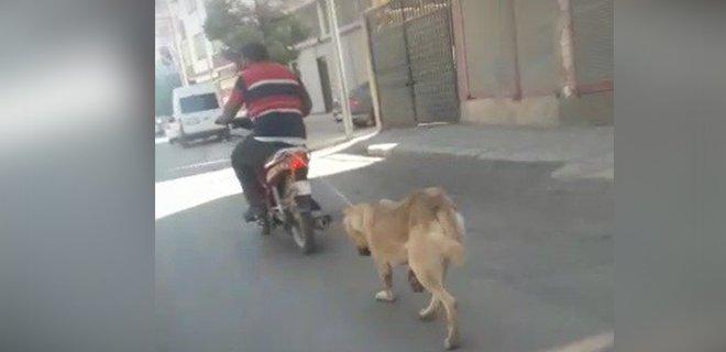 Köpeğin Boğazına İp Geçirip Motosiklete Bağladı