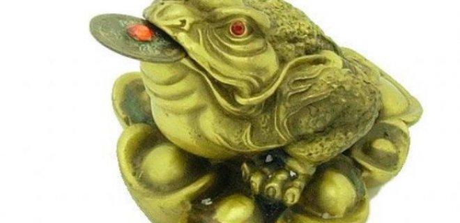 bereket kurbağası