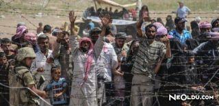 Suriye Sınırında Yaşanılan Dramlar