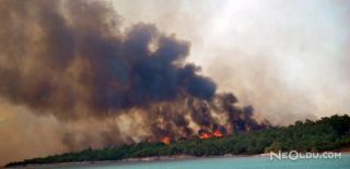 Ayvalık'taki Orman Yangınında Sabotaj İddiası