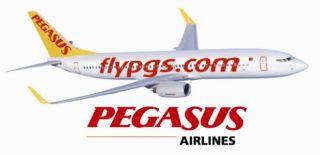 Pegasus Ankara Uçak Bileti Yüzde 40 İndirim Kampanyası