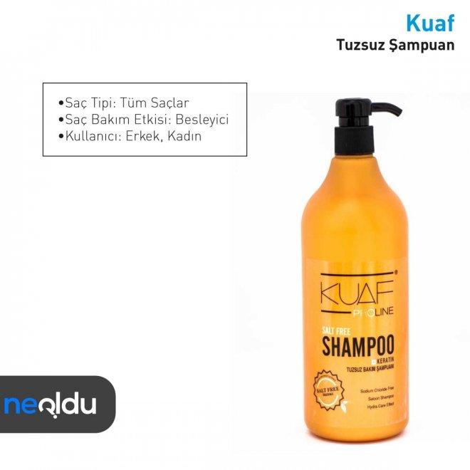 en iyi tuzsuz şampuan