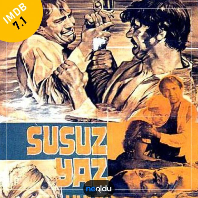 Seri Türk Filmleri ve Üçlemeleri