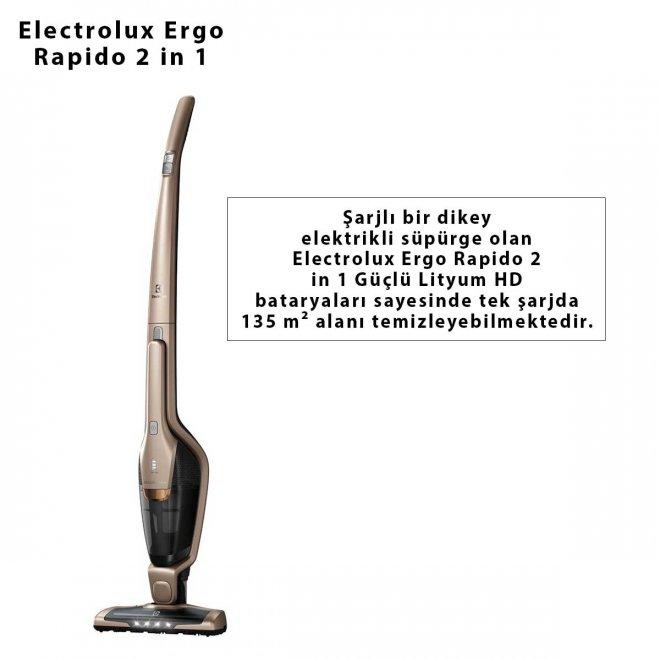 Electrolux Ergo Rapido 2 in 1