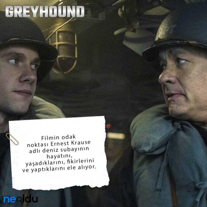 Greyhound4