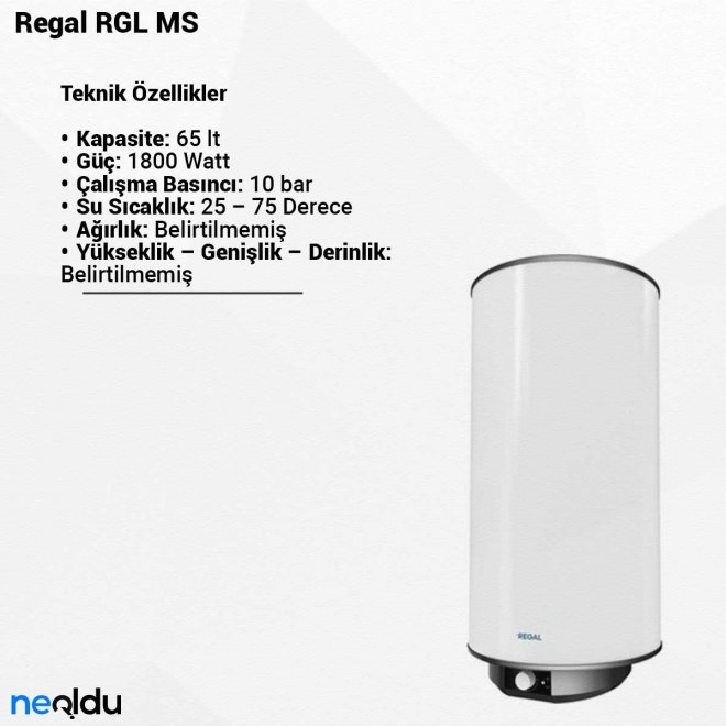 Regal RGL MS