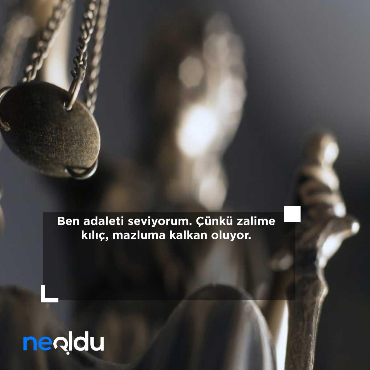 neoldu com