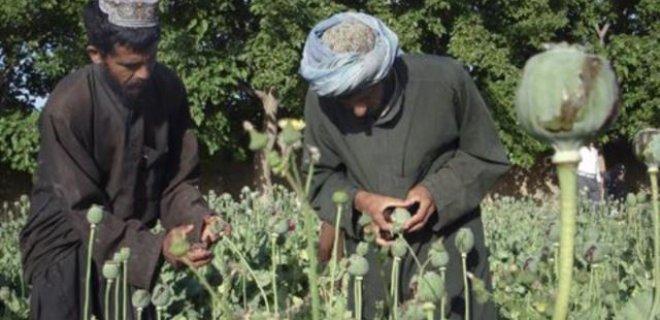 afgan-hashasi.jpg