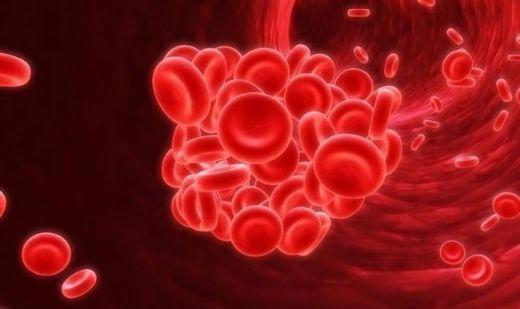 akdeniz-anemisi-tedavisi-001.jpg