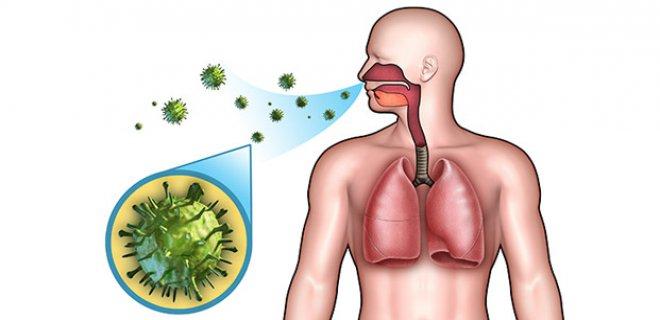 alt-solunum-yolu-enfeksiyonlarina-karsi-bitkisel-cozumler-006.jpg