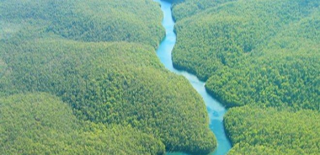 amazon-nehri.jpg