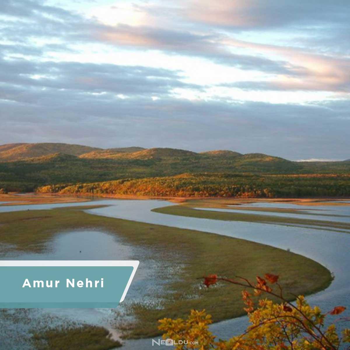 amur-nehri.jpg