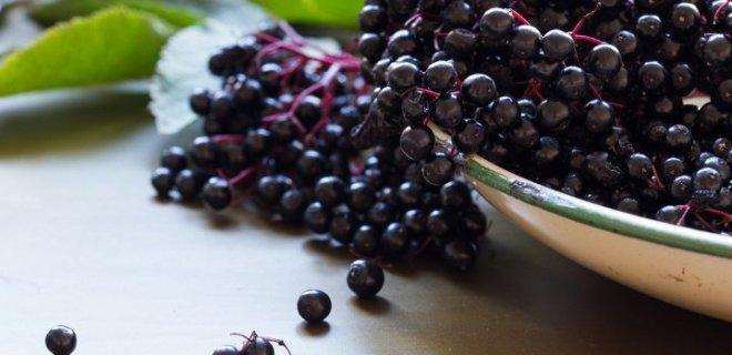antioksidan-kapasitesi-yuksek-bir-meyvedir.jpg