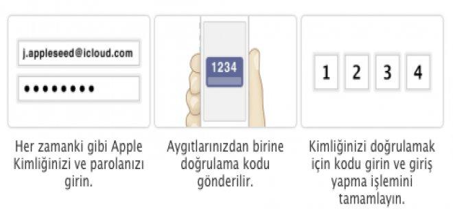 apple-010.jpg