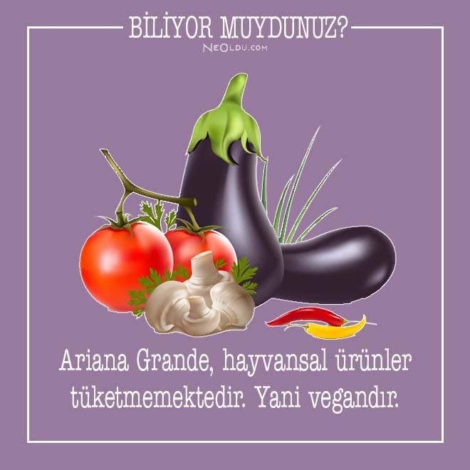 ariana grande hakkında bilgi
