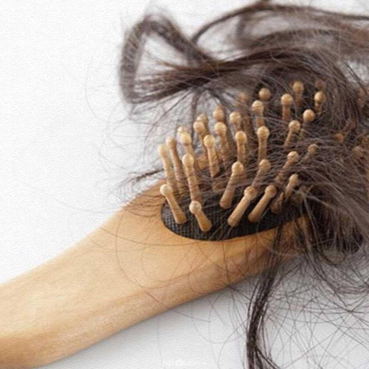 Avokado Yağı Saça Faydaları