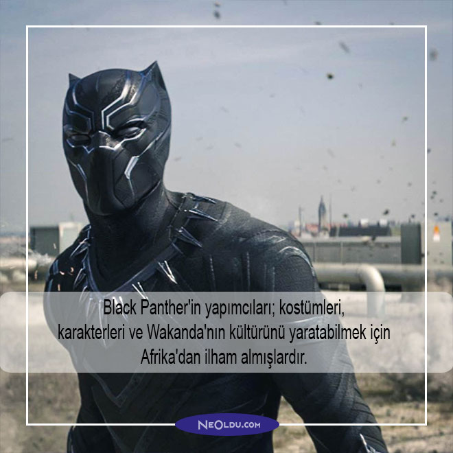 black panther hakkında bilgi