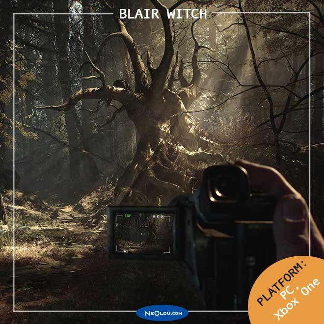 blair-witch-001.jpg