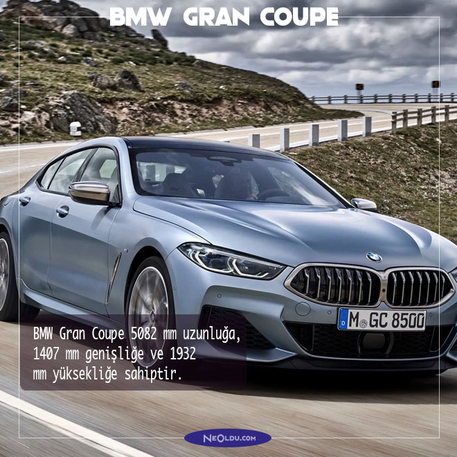 BMW Gran Coupe 2020 inceleme