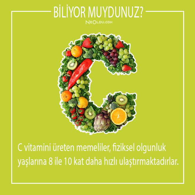 c vitamini hakkında bilgi