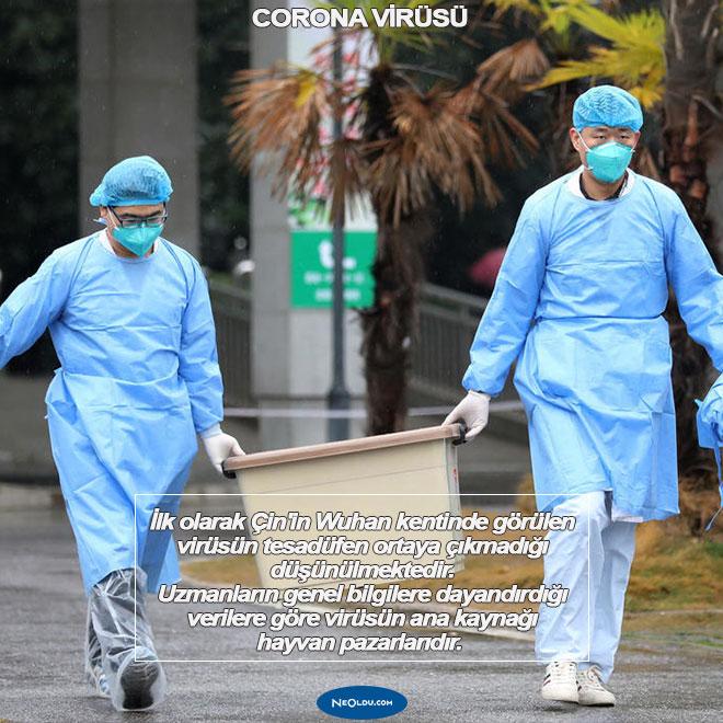 Corona Virüsü Hakkında Bilinmeyenler