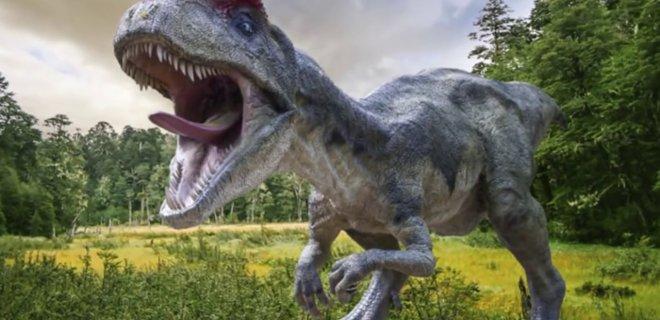 dinozor-005.jpg