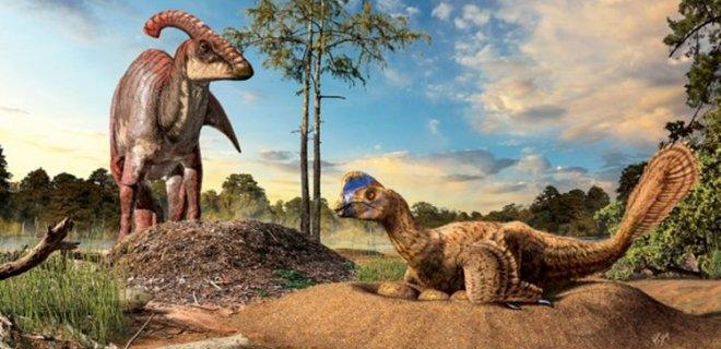 dinozor-yuvalari-001.jpg