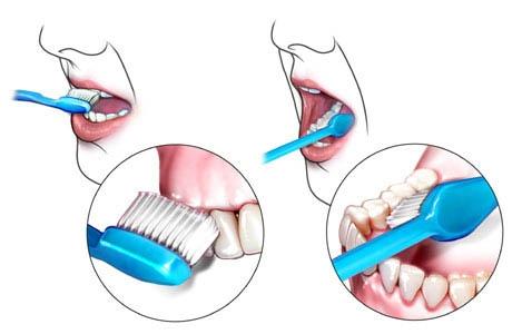 diş fırçalanması gereken yerlerr