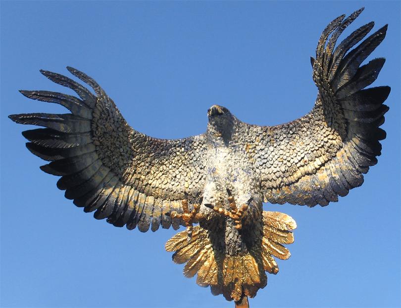 yırtıcı kuş doğan