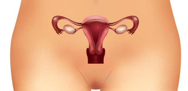 Doğuştan Vajina Yokluğu