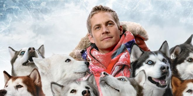 eight-below.jpg