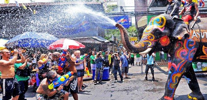 Festival - Su Festivali