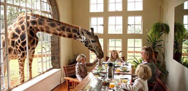 giraffe-manor-otel-2.jpg