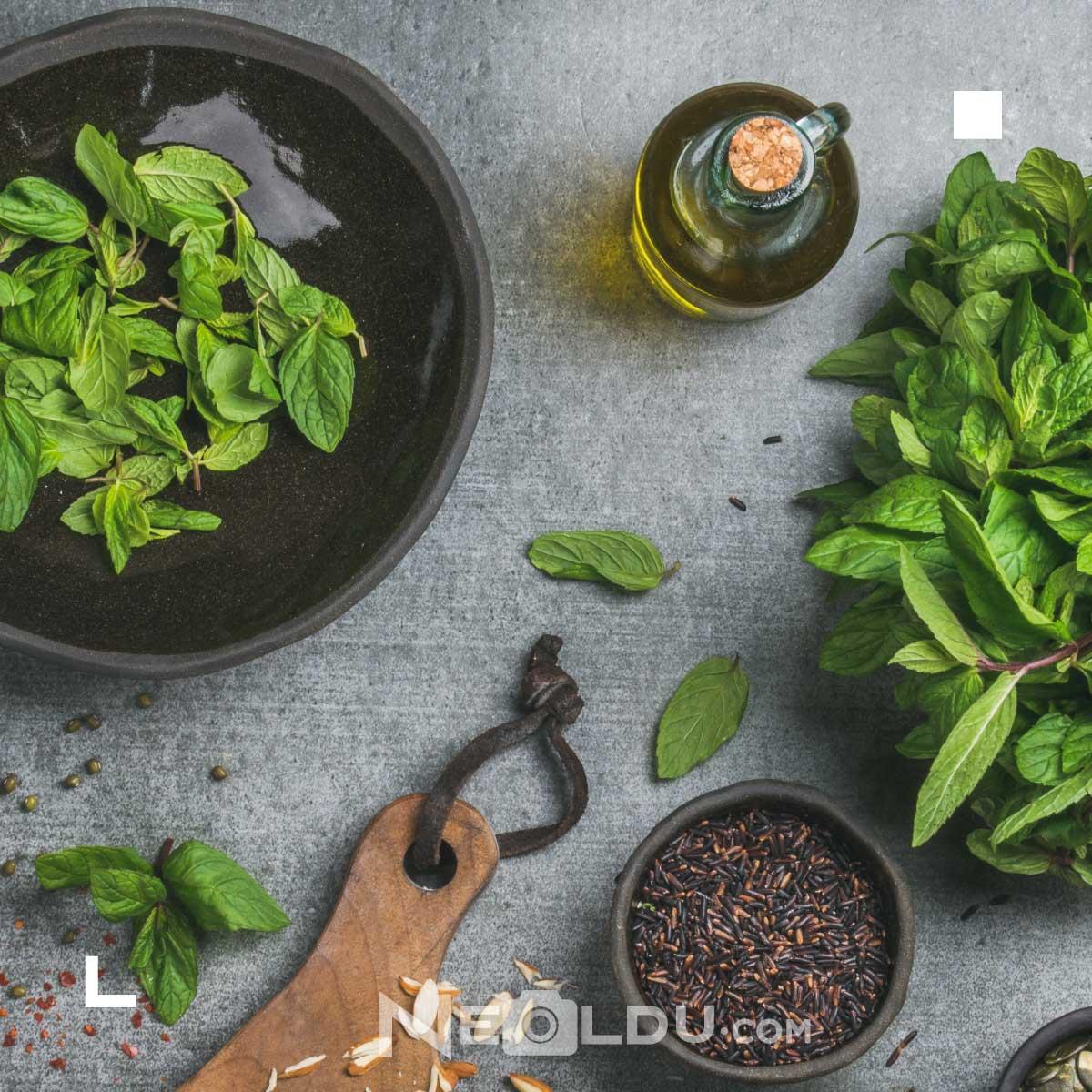 Hızlı Saç Uzatan Bitkiler