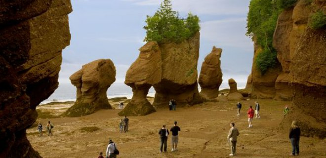 hopewell-rocks.jpg