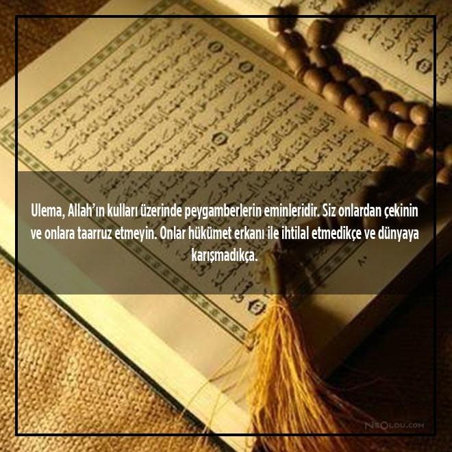 hz. muhammed sözleri