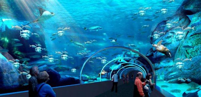 iki-okyanus-akvaryumu-001.jpg