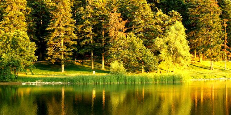 istanbula yakın kamp alanları pürenli yaylası