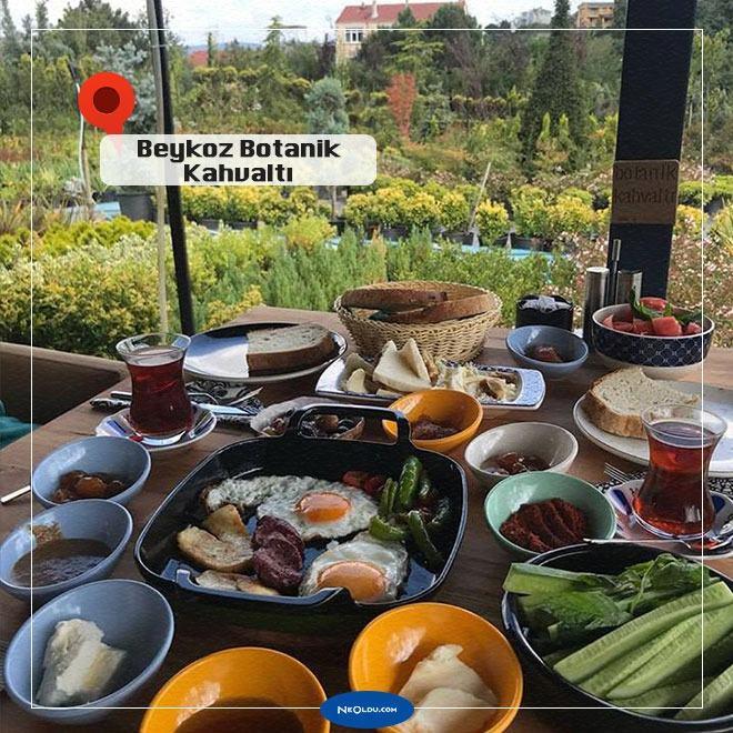 Beykoz Botanik Kahvaltı