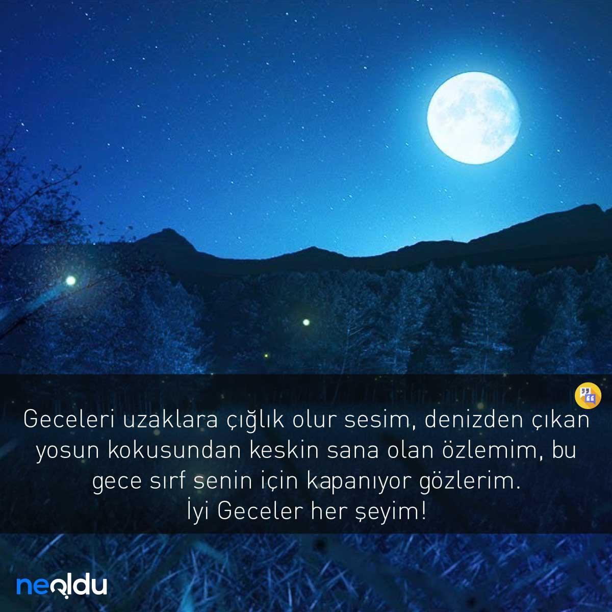 Sevgiliye İyi Geceler Mesajı