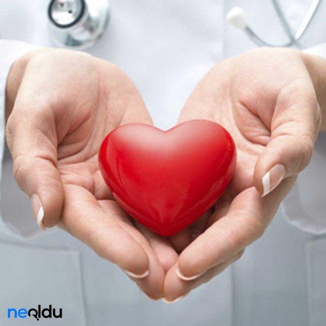 kalp-sağliği-006.jpg