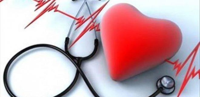 kalp-ve-damar-sagligini-korur.jpg
