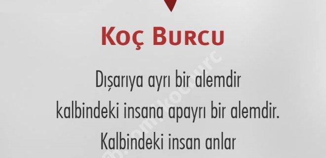 kocburcu3.jpg