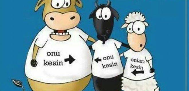 kurban-bayrami2.jpg