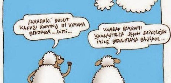 kurban-bayrami3.jpg