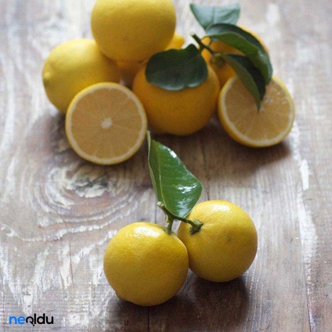 limon-.jpg