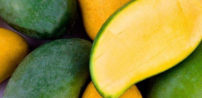 mango-003.jpg