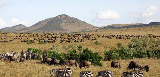 masai-mara.jpg