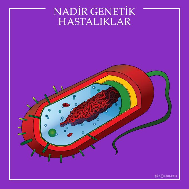nadir görülen genetik hastalıkların vücut kokusu