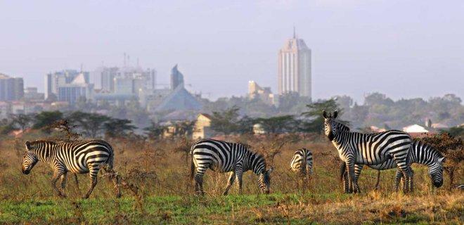 nairobi-ulusal-parki.jpg